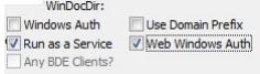 web windows auth checkbox